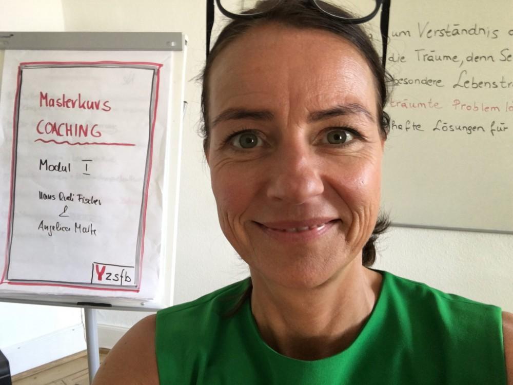 zsfb Heidelberg: Masterkurs systemisches Coaching